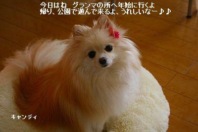 s-IMG_1523_20120103221033.jpg