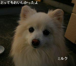 s-IMG_1604.jpg