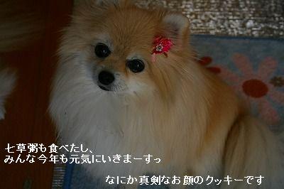 s-IMG_1640_20120109003618.jpg