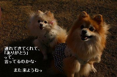 s-IMG_3024.jpg