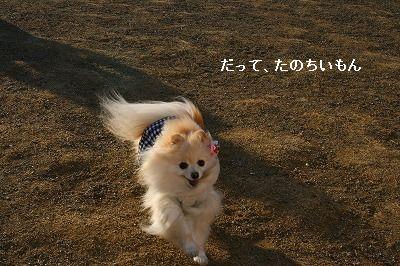 s-IMG_3030.jpg