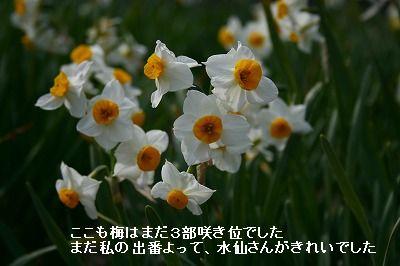 s-IMG_3529.jpg