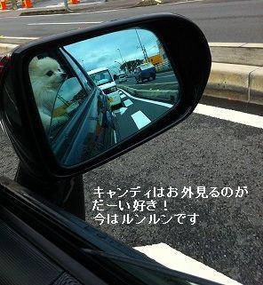 s-tatsu.jpg