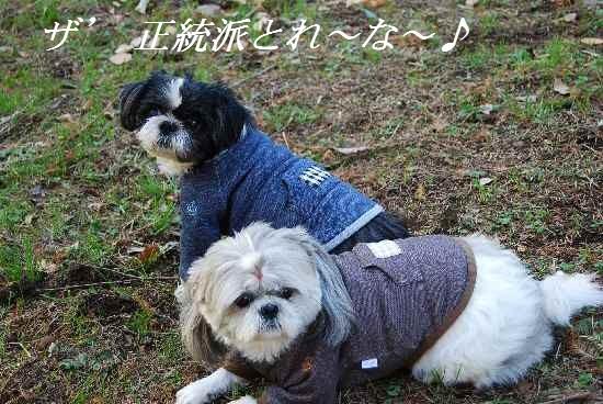 kaminosato10.jpg