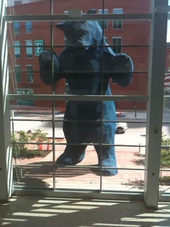blue bear front