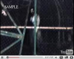妊娠していた地主の妻の霊が出るトンネル by YouTube