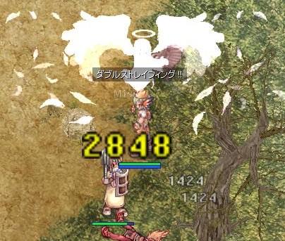 ニーノ君71