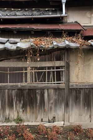 2011-10-08 華0981