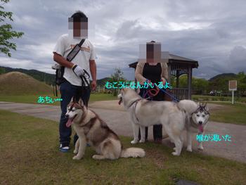 R0011698_edited-1.jpg