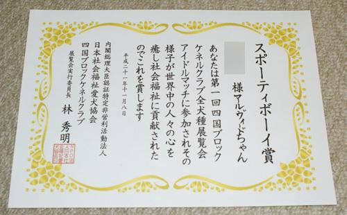 10 アイドル・マッチ・ショー 14