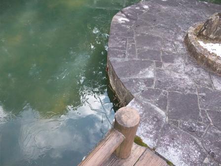 凍ってる池