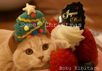 きびたろうクリスマスカード