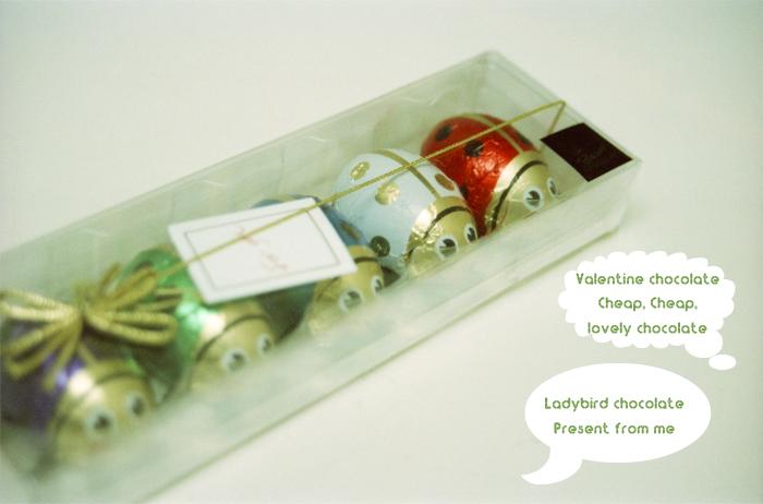 Ladybird chocolate2