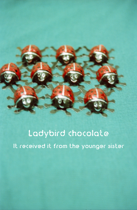 Ladybird chocolate3