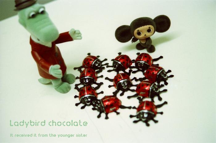 Ladybird chocolate