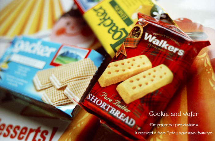 Cookie and wafer