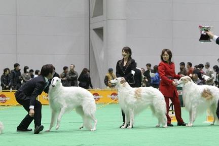 2012.japan 9