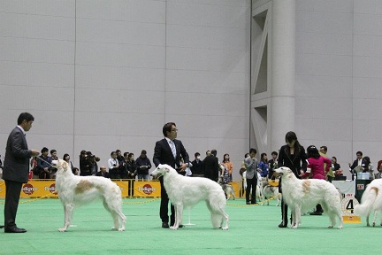 2012.japan 10