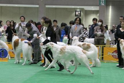 2012.japan 12
