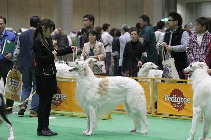 2012.japan 7