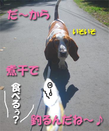 09_autumn02.jpg