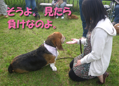 10_basepa_21.jpg