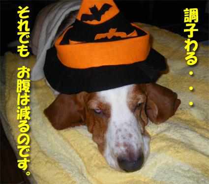 11_halloween_01.jpg