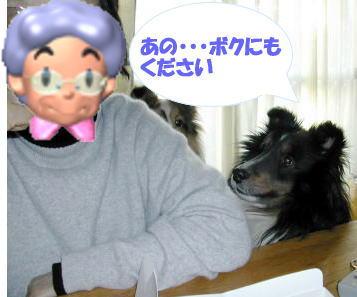kudasai1.jpg