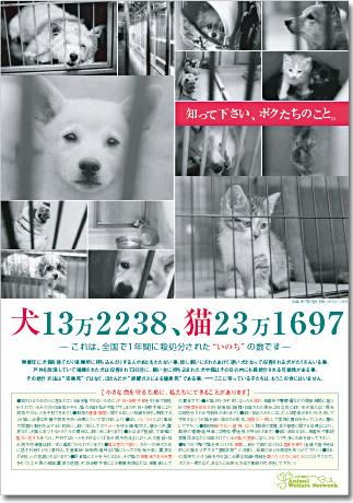 poster_big_01.jpg