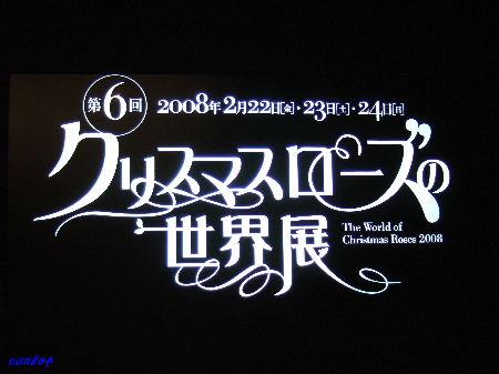 第6回WCR2008