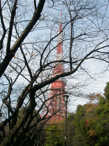 東京タワー 昼