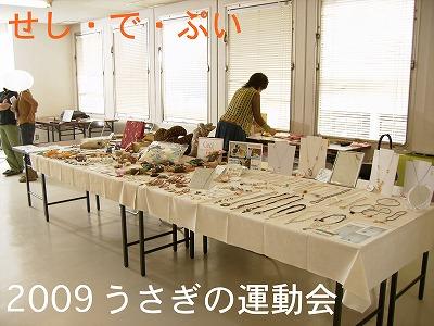 s-cdp2009運動会