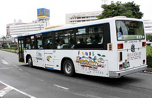 a-IMG_8904.jpg