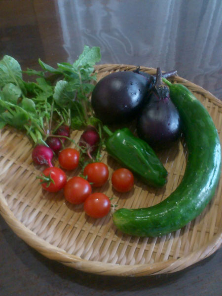 20110710収穫