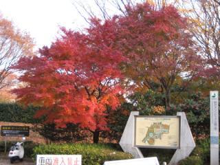 20071202_komazawa.jpg