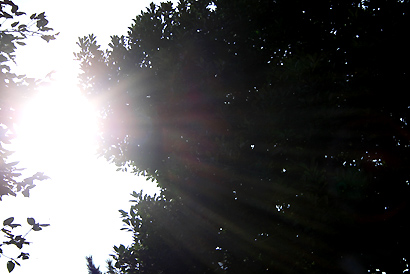 091022-3.jpg