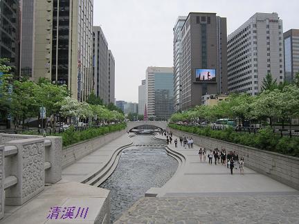 2011.05.21~05.23韓国旅行 091(10)