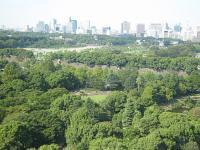 2007106d.jpg