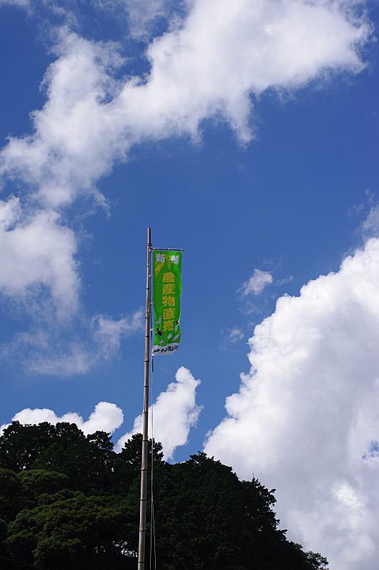 見山の郷の幟