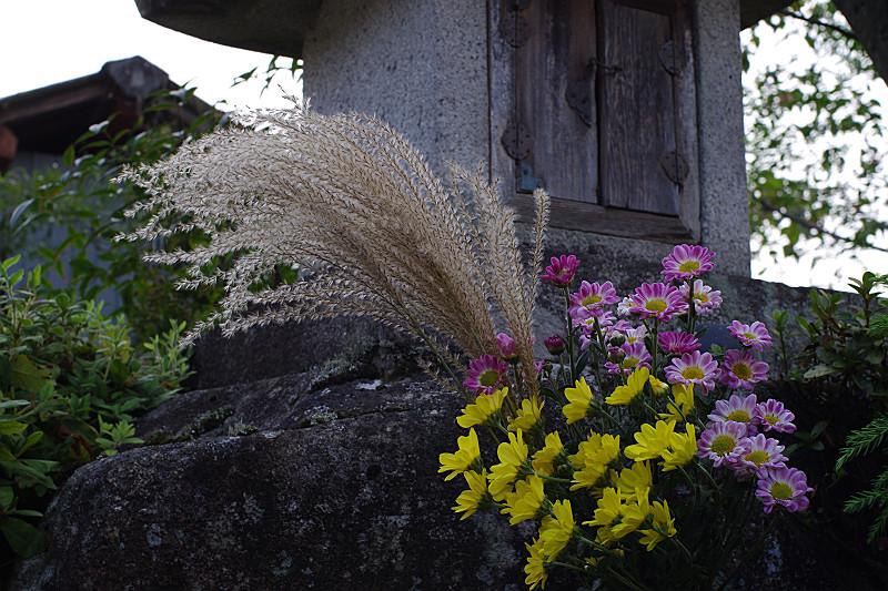 参道の祠と秋の草花
