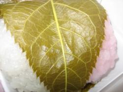 この葉っぱが好きなんです(*^_^*)