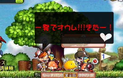 Maple110724_130752.jpg