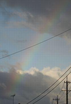 ショコラ 015虹