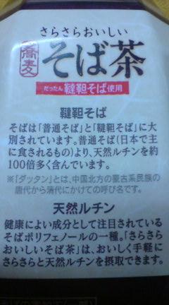 20080306124428.jpg