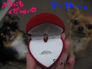 婚約(?)指輪