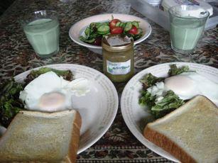 breakfast_20110709125632.jpg