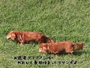 091029 blog4