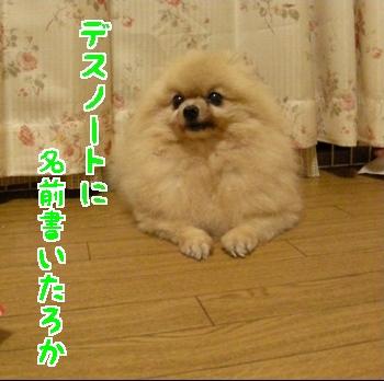 871110_20071110051848.jpg