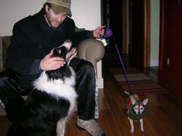 dogsitter5.jpg
