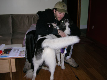 dogsitter7.jpg
